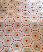 Vintage Grandmas Flower Garden Quilt 30s Pastel Blue Hand Stitched 70x80