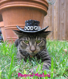 Buckaroo Black Cowboy hat for dogs and cats (plain - no crystal letters)