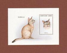 Burmilla cat stamp souvenir sheet Mnh Sierra Leone