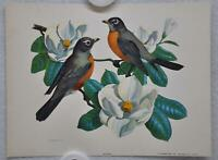 Robin on Magnolia Rudolf Freund Birds Lithograph Art Print 6 x 8