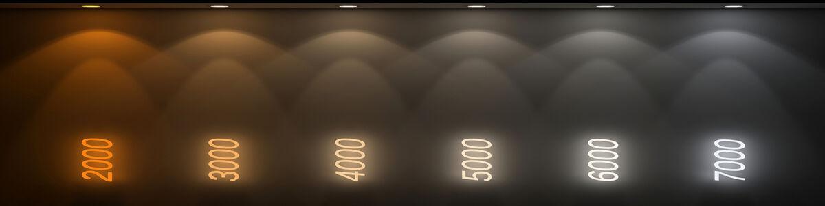 MARCADI LIGHT