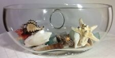 Fine Crystal Vase with Shells and Sea Crystals. Modern Design