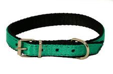 Collari verde in nylon per cani