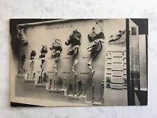 Vintage Postcard. Peabody Museum Natural History Yale University USA