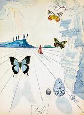 Salvador Dali butterflies art reproduction giclee 8X12 canvas print poster