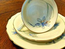 Rosenthal/F. Thomas Cambridge Ivory Tea Set - Bavaria/Germany - Blue Tulip Decor