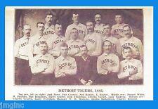 1886 Detroit Tigers Team - Postcard reproduction