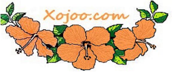 xojoo_com