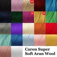 Caron Simply Soft Aran Knitting Crochet Acrylic Wool Yarn 170g Ball 20+ Shades