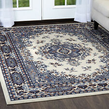 "Persian White Area Rug 4 X 6 Small Oriental Carpet 69 - Actual 3' 7"" x 5' 3"""