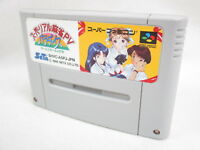 Super Famicom REAL MAHJONG PV PARADISE Nintendo Cartridge Only Japan sfc
