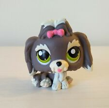 Authentic Littlest Pet Shop #1523 Gray Cream Lhasa Apso Dog Green Eyes Pink Bow