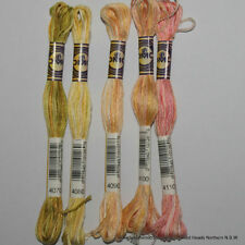 Multi-Coloured Embroidery Threads