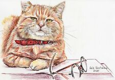 A Learned Cat watercolor original animal drawing painting kitty cute pet art