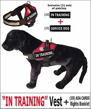 """""""IN TRAINING"""" - DOG VEST + Rights Card/Booklet + (2) Service Dog Patches"""
