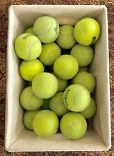 25 Used Tennis Balls Great As Dog Toys, Playing Catch, Baseball, Chair & Tables