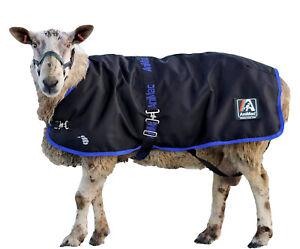 AniMac Ram Rug | Waterproof jacket for large sheep