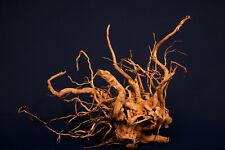 Aquarium Wurzel *48cm* / Redwood Premium / Aquarium Deko / Aquascaping RH1952