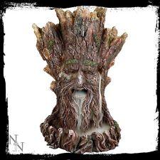 Spirito dell'albero antiriflusso bruciatore di incenso Nemesis Now + 1 BOTTIGLIA CONI Verde Uomo wicca