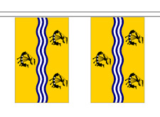 More details for scotland county city council flag polyester bunting - premium quality