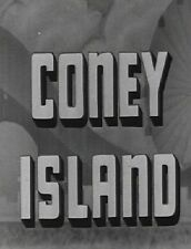 2 Vintage Films of Coney Island New York NY on DVD
