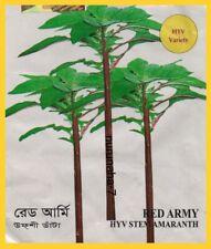 Asian Bangladeshi Seeds Red Army STEM AMARANTH Data Denga Dugi ডাঁটা ডেংগা ডুগী