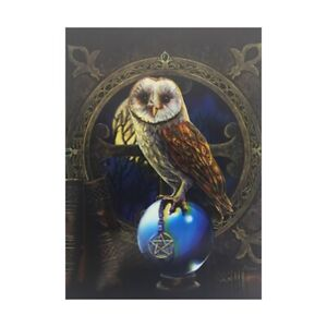 Nemesis Now 3D Picture Spell Keeper By Lisa Parker Owl Poster Wall Fantasy Art