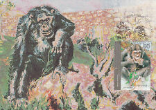 Postcard Chimpanzee New Jerusalem Zoo Mint Condition