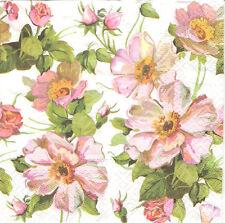4 Tovaglioli di carta singolo PER DECOUPAGE ROSA Wild Rose