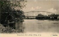 C-1905 Susquehanna River Bridge Sidney New York Pudney postcard 5745