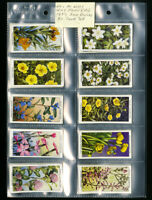 Wills's Cigarette Cards Wild Flowers 1937 2nd Series 50 Card Collection