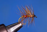 Fliegentom 3 Piece Green BRASSIE Nymph
