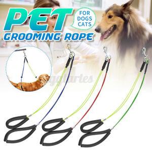 Adjustable Dog Cat Pet Grooming Table Arm Bath Restraint Rope Harness Noose Loop