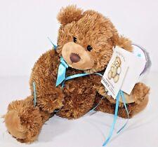 "Family Christian Brown Praying For You Bear Plush 10"" Stuffed Animal Tag Balloon"
