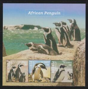 GAMBIA 2014 BIRD STAMPS AFRICAN PENGUIN  SS MNH - BIRDL600