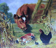 Cow Chickens baby chicks by John Robinson Tait               Vintage art