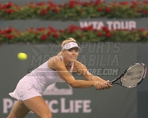 Maria Sharapova backhand return  8x10 11x14 16x20 photo 707