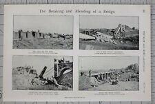 1900 PRINT ROYAL ENGINEER CONSTRUCTION TRAIN BRONKHURST SPRUIT REPAIRING BRIDGE