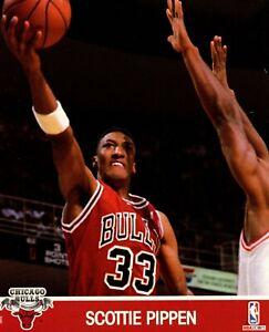 Scottie Pippen Chicago Bulls 1991 NBA Hoops 8x10 Glossy Cardstock Photo A1