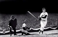 Ted Williams Photo Poster 11X17 - Boston Red Sox Fenway  Buy Any 2 Get 1 FREE