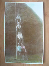 VINTAGE POSTCARD 6 CHILDREN ON A VERY LARGE FRUIT PICKERS LADDER  RP