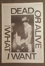 Dead or Alive What I Want 1984 press advert Full page 30 x42cm mini poster