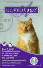 Advantage Flea Control Cats Under 9lbs 4 Month
