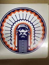 Illinois Fighting Illini cornhole board or vehicle decal(s) NCAA FI1