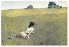 Christina's World by Andrew Wyeth Art Print Woman in Field Poster 11x14