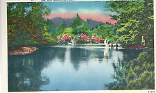 The Old Swimming Hole Cool Retreat In A Mountain Stream  Unused  Postcard 10164