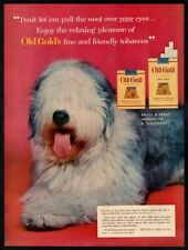 1954 OLD GOLD Cigarettes - Cute Shaggy Dog- Pup- Animal- Red- VINTAGE AD