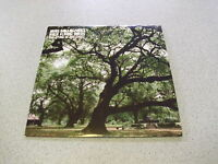 """Noel Gallagher - The Dying Of The Light - 7"""" Single Vinyl"""