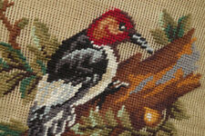 Vtg. Handcrafted Woodpecker Preworked Needlepoint Canvas