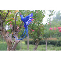 Fake Artificial Long Tail Bird Realistic Taxidermy Home Garden Decor New #13